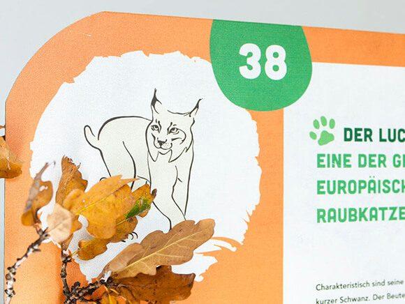 Wildpark Gruenau Plakat 02