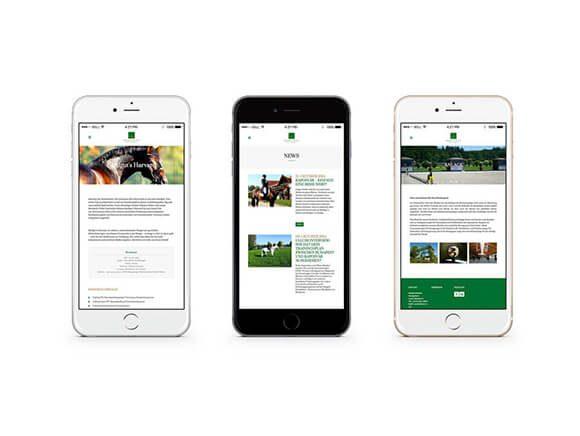 Batlgut iPhone WEB Neugestaltung Smartphone