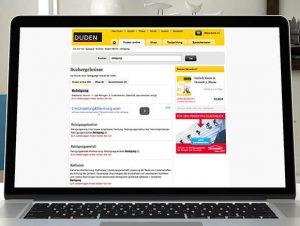 Schmidt Reinigung Online Marketing Kampagne 01
