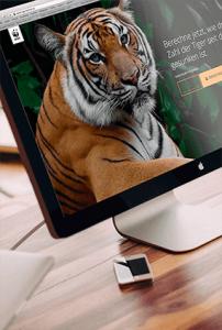 WWF Tiger Homepage 01 Thumbnail